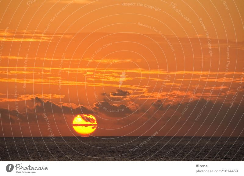 caprisonne Nature Elements Fire Air Water Sky Clouds Sun Sunrise Sunset Beautiful weather Ocean Esthetic Gigantic Glittering Large Kitsch Maritime Natural