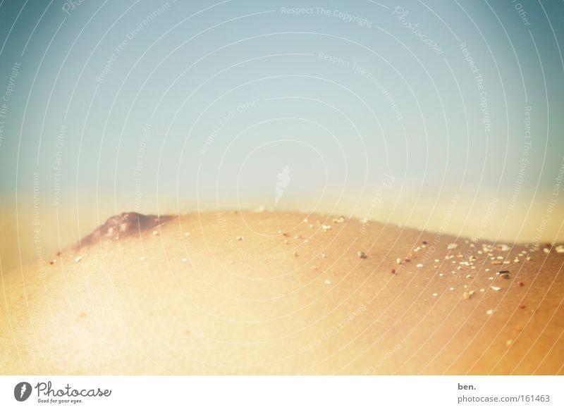 dunes Chest Sand Summer Sun Beach Ocean Beach dune Dune Warmth Sunbathing Naked Landscape Hill Coast Feminine Curve