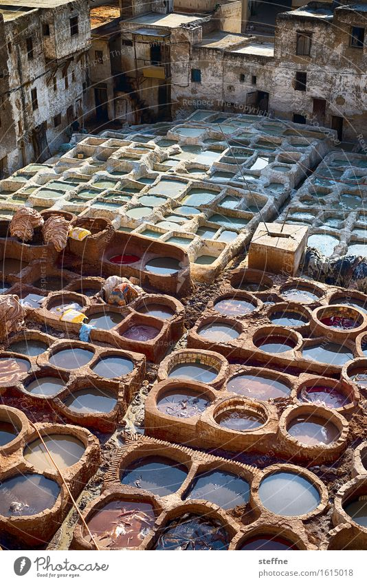 Arabian Dream II Morocco Near and Middle East Vacation & Travel Tourism Fez Tanner Pelt Dyeing Colour pot
