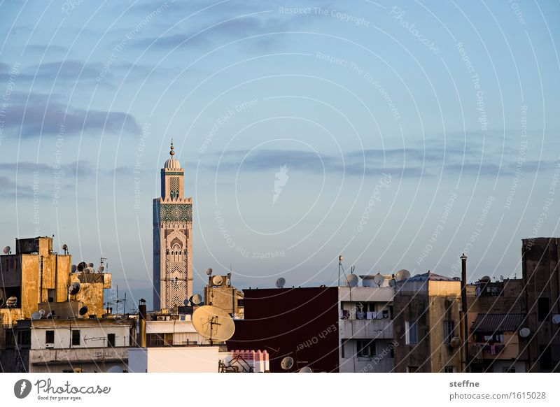 Arabian Dream IV Beautiful weather Religion and faith Morocco Orient vacation Tourism Casablanca Mosque Minaret Sunrise Mosque Hassan II Copy Space top