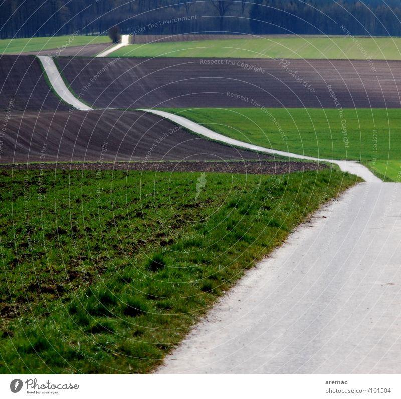 Street Spring Lanes & trails Landscape Field Waves Transport Asphalt Hill Agriculture Traffic infrastructure Curve Pavement