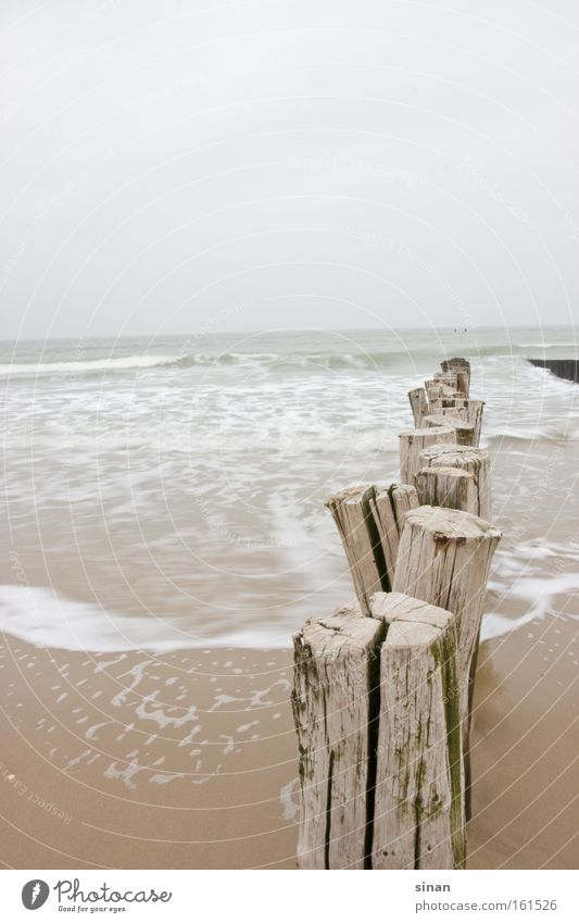 Zeeland North Sea beach Beach Water Ocean Bad weather Weather Cold Wood Waves Sand Wet Dreary Netherlands Horizon