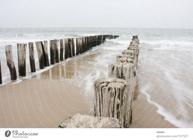 Zeeland, North Sea Beach Water Ocean Bad weather Weather Cold Wood Waves Sand Wet Dreary Netherlands Horizon Coast