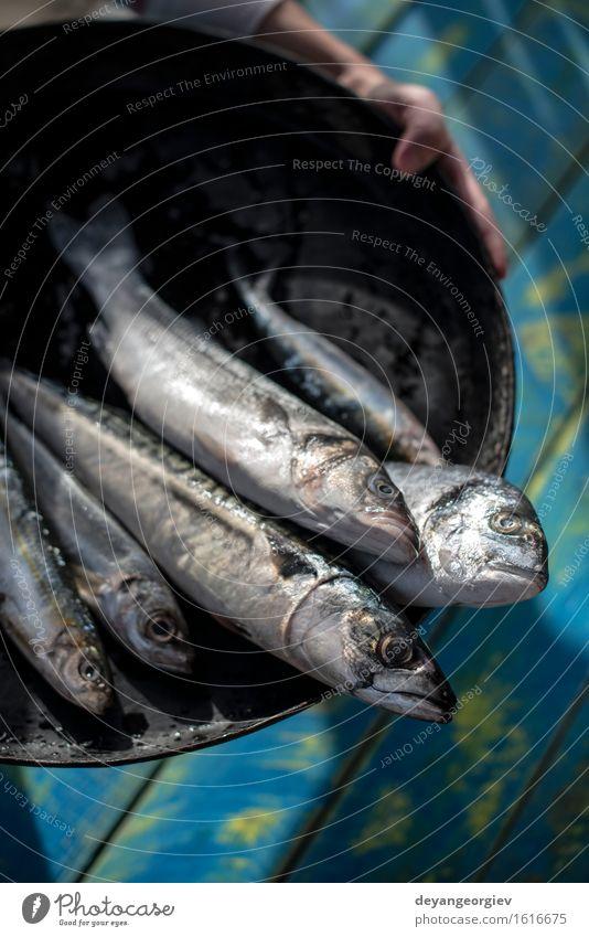 Raw fish. Sea bream, sea bass, mackerel and sardines Seafood Lunch Pan Cook Fresh Blue Black Lemon Fat Mackerel Ingredients Sardine Meal Dish Exterior shot