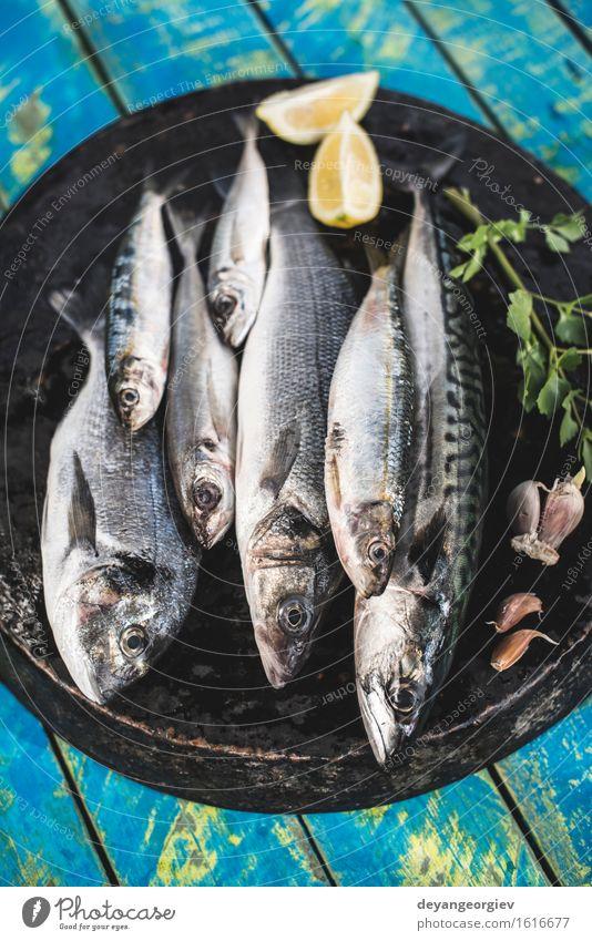 Raw fish. Sea bream, sea bass, mackerel and sardines Seafood Lunch Pan Cook Fresh Blue Black Lemon Fat Mackerel Ingredients Sardine Meal Dish Exterior shot Fish