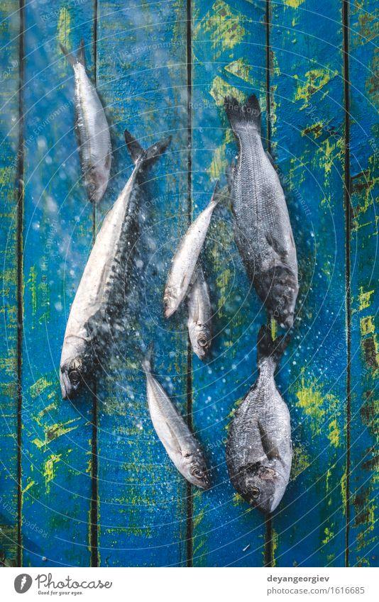 Wash fish. Sea bream, sea bass Seafood Lunch Pan Cook Fresh Blue Black Lemon Raw Fat Mackerel Ingredients Sardine Meal Dish Exterior shot Day Fish Perches