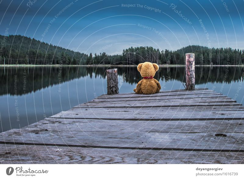 Teddy bear sitting on a pier on the shore of a mountain lake Relaxation Garden Baby Friendship Infancy Nature Park Toys Doll Love Sit Cute Retro Brown Green