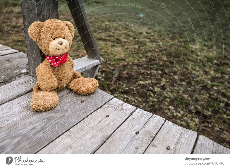 Teddy bear sitting on a pier. Relaxation Garden Baby Friendship Infancy Nature Park Toys Doll Love Sit Cute Retro Brown Green Loneliness Bear Jetty vintage