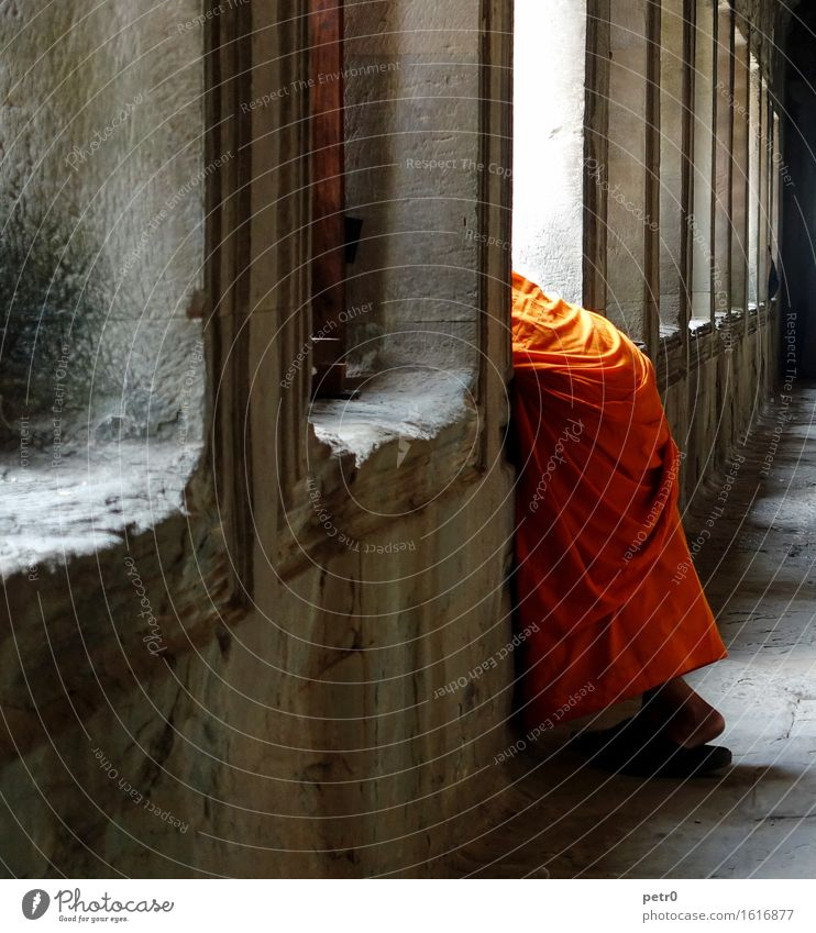monk Human being Masculine Man Adults 1 18 - 30 years Youth (Young adults) Angkor Wat Cambodia Asia Temple Wall (barrier) Wall (building) Corridor