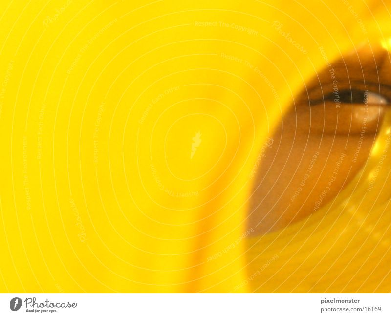 you're looking at the Yellow Light Human being Eyes