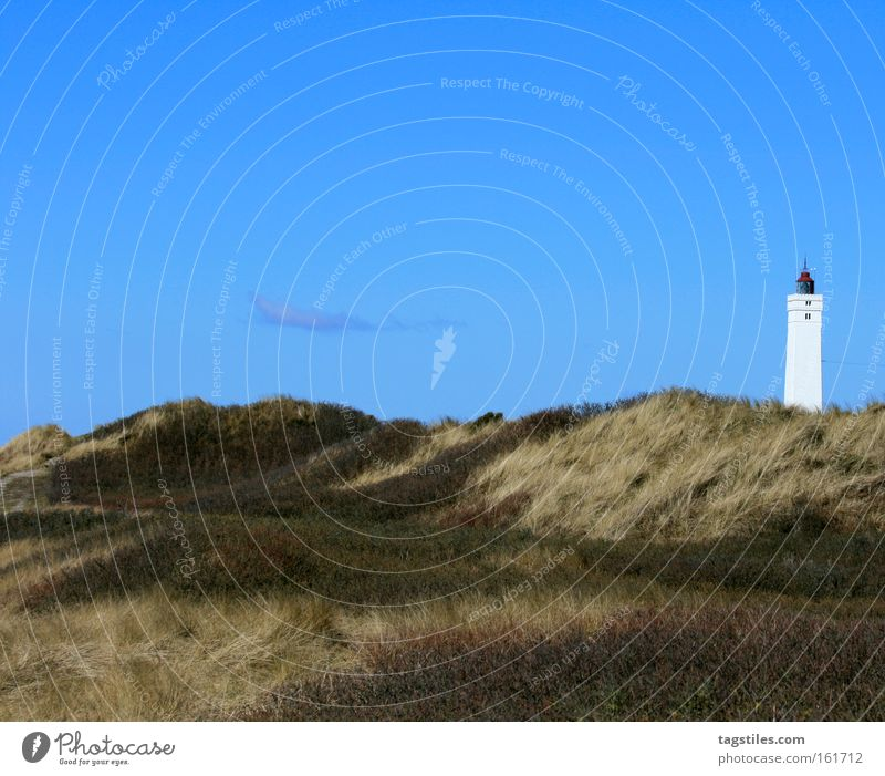 LEUCHTTURM FROM Blåvandshuk Blavands Huk Beach Lighthouse Beach dune Dune Grass Plant Summer Sky Vacation & Travel Leisure and hobbies Denmark Relaxation