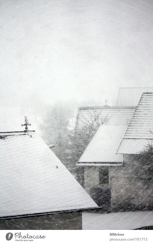 White Winter Cold Snow Snowfall Sadness Fog Frost Roof Farm Traffic infrastructure Barn Courtyard Snowflake Eifel