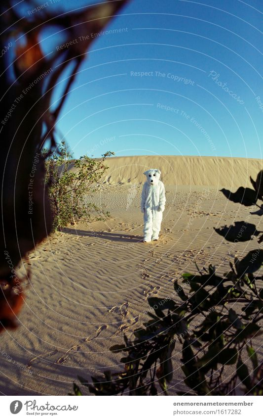Sky White Loneliness Warmth Art Work and employment Esthetic Walking To go for a walk Desert Hot Costume Work of art Fairy tale Bear Polar Bear