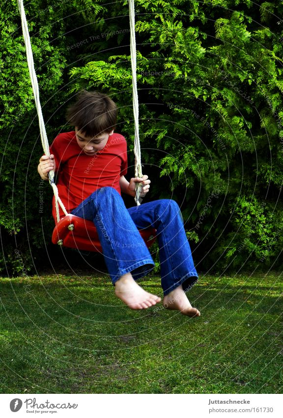 Child Joy Boy (child) Playing Garden Freedom Happy Infancy Swing Playground Recklessness To swing Weightlessness
