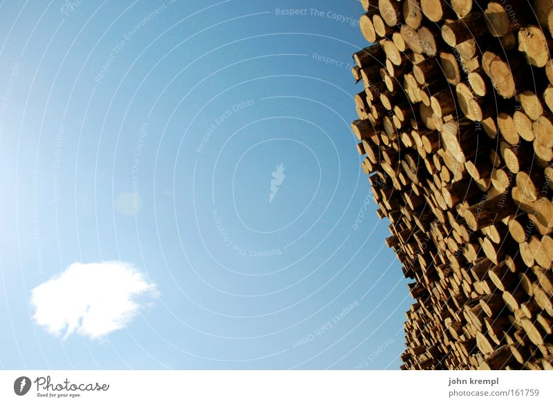 a lot of wood in front of the hut Wood Stack of wood Tree Tree stump Tree trunk Clouds Sky Blue Wooden wall Forestry Saw mill