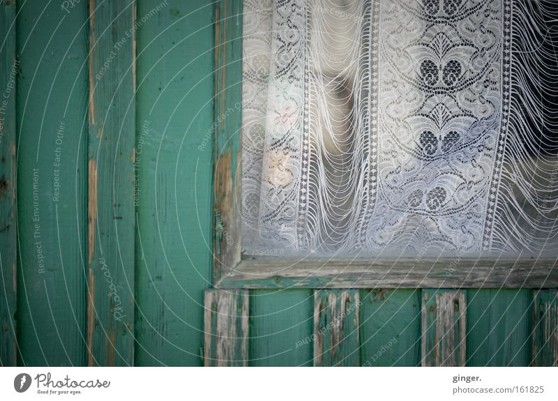 Old Green White House (Residential Structure) Window Dark Wood Gray Car Window Exceptional Glass Transience Derelict Hut Wooden board Trashy