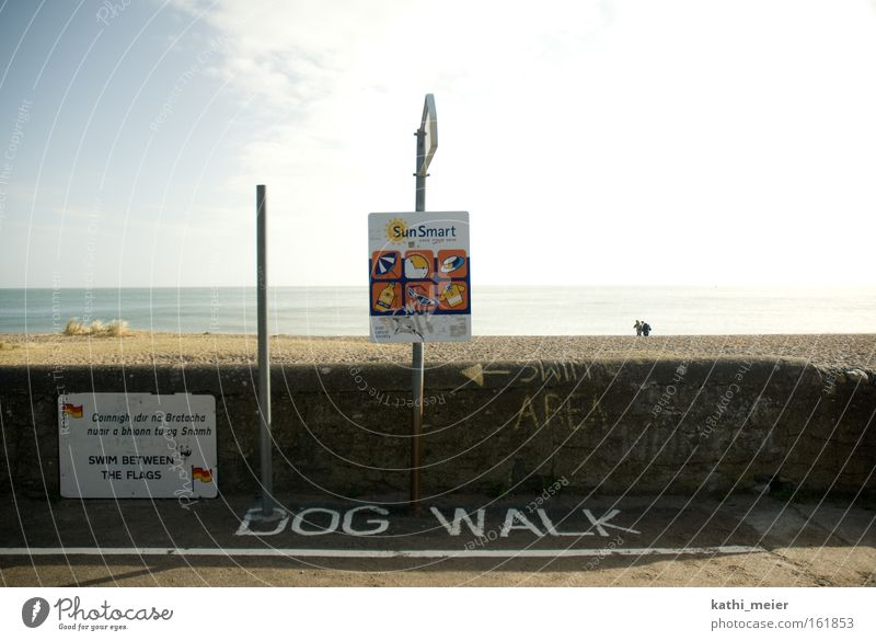 Sky Sun Summer Joy Beach Ocean Coast Dog Funny Warm-heartedness Ireland Catwalk Humor Irony