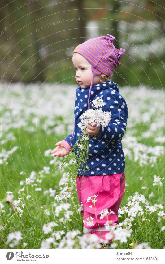 flower power Feminine Child Toddler Girl Infancy 1 Human being 1 - 3 years Cap Blonde Esthetic Beautiful Flower meadow Point Spotted Pick Joy Spring