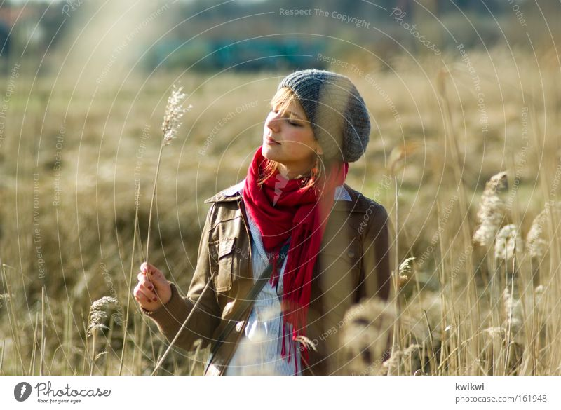 meadow + spring Happy Contentment Relaxation Summer Woman Adults Landscape Spring Meadow Cap Observe Blossoming Discover Dream To dry up Straw Pasture
