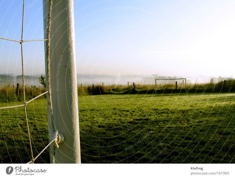 Germany ahead - another goal Soccer Grass surface Playing Ball Goal Net World champion Sun Reflection Leather Sporting event Landscape Sports Indecisive Success