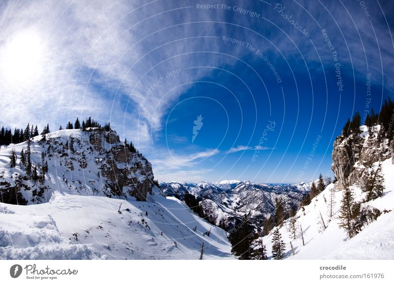 Sky Tree Winter Clouds Snow Mountain Large Alps Vantage point Austrian Alps Winter sports Treetop Valley Clump of trees