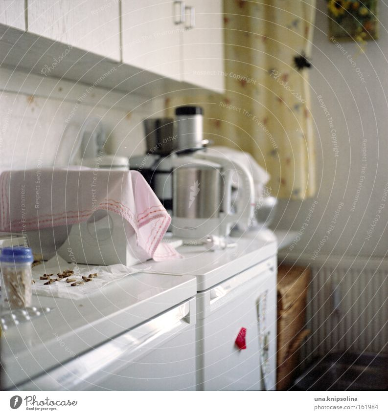 Flat (apartment) Cleaning Cooking & Baking Kitchen Furniture Equipment Household Photos of everyday life Cupboard Icebox Electric kitchen appliance