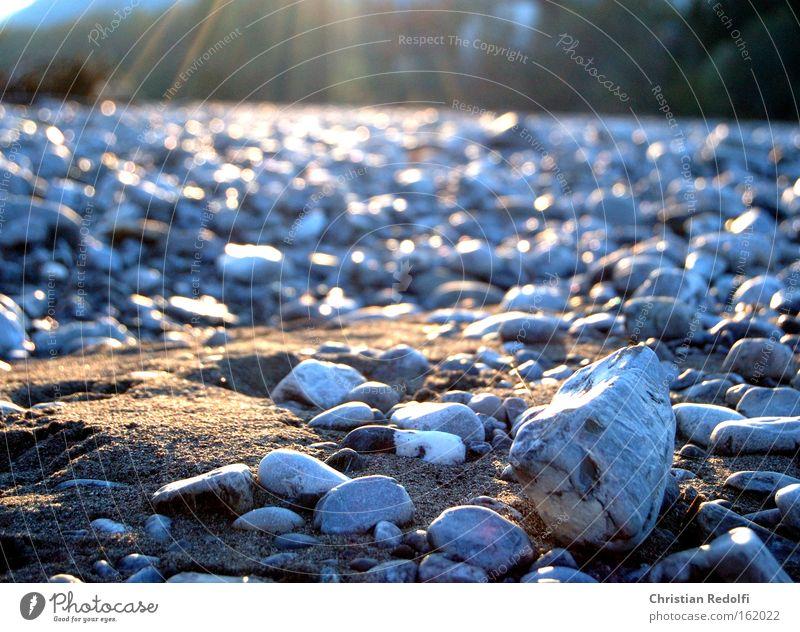 Sun Summer Beach Coast Sand Stone Grief River Lakeside Dandelion River bank Distress Gravel Brook Federal State of Vorarlberg Puppydog eyes