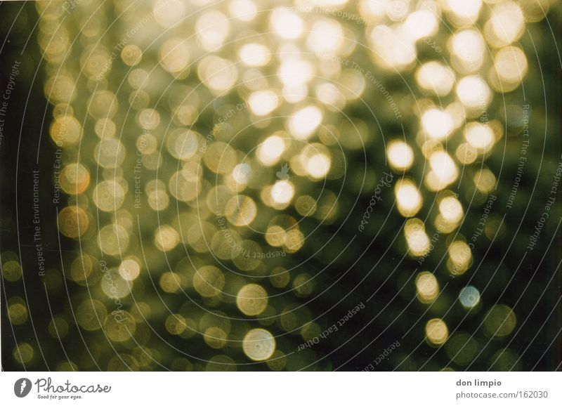 Warmth Rain Glass Door Background picture Gold Point Pattern Glimmer Celestial bodies and the universe Distributed