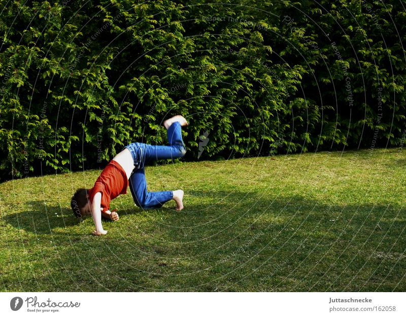 Child Vacation & Travel Joy Playing Boy (child) Garden Free To enjoy Gymnastics Salto Romp High spirits Somersault