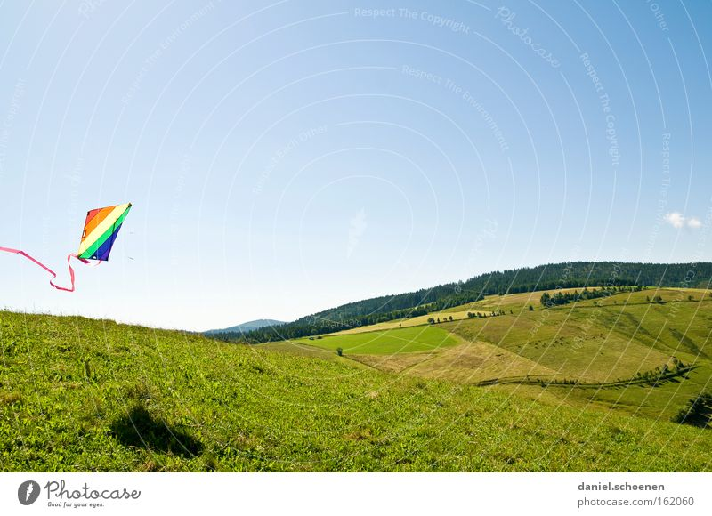 Schauinsland without snow Wind Kite Kiting Colour Multicoloured Summer Aviation Weather Light Sky Blue Spring Playing