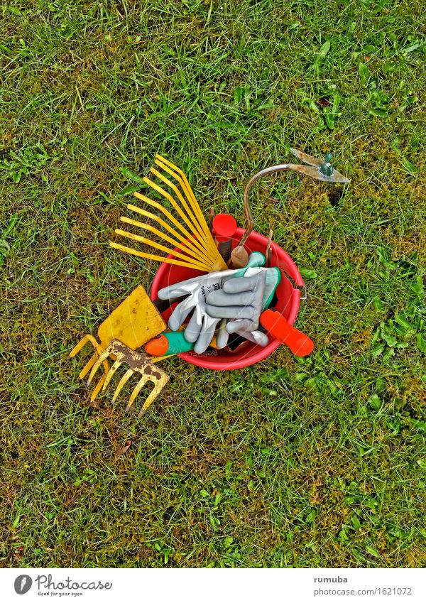 gardening Leisure and hobbies Garden Tool Environment Plant Meadow Work and employment Yellow Green Red Spring fever Passion Obedient Diligent Growth