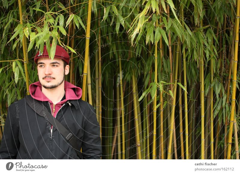 Man Nature Green Leaf Black Spring Head Stand Jacket Facial hair Botany Human being Bamboo Bamboo stick Cap Baseball cap