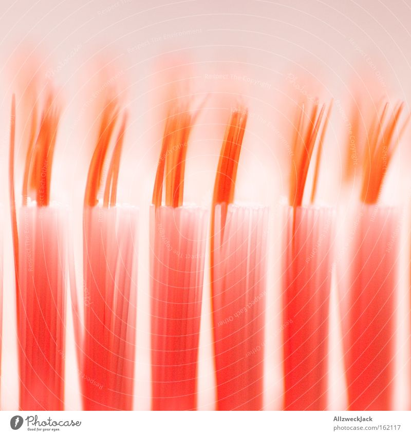 Cleaning Macro (Extreme close-up) Brush Bristles Toothbrush Dental care Interdental space