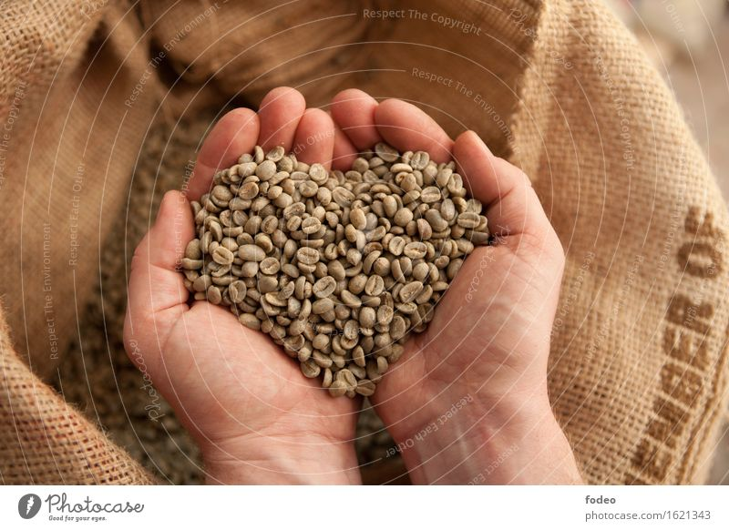 Nature Hand Love Natural Small Brown Earth Work and employment Contentment To enjoy Joie de vivre (Vitality) Industry Round Touch Coffee Drinking