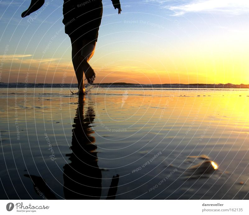towards the sun Sun Sunrise Ocean Water Beach Walking Mirror Reflection Horizon Clouds Mussel Blue Yellow Shadow Coast