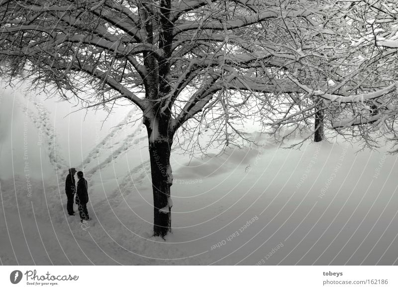 Here our way separates Winter Snow Human being Tree Lanes & trails Walking Cold Loneliness Divide Black & white photo