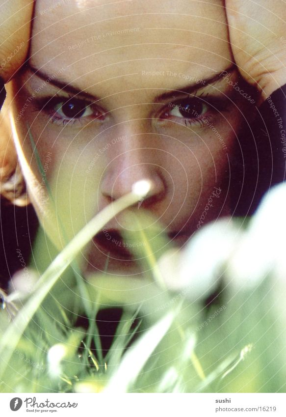 Woman Human being Eyes Meadow