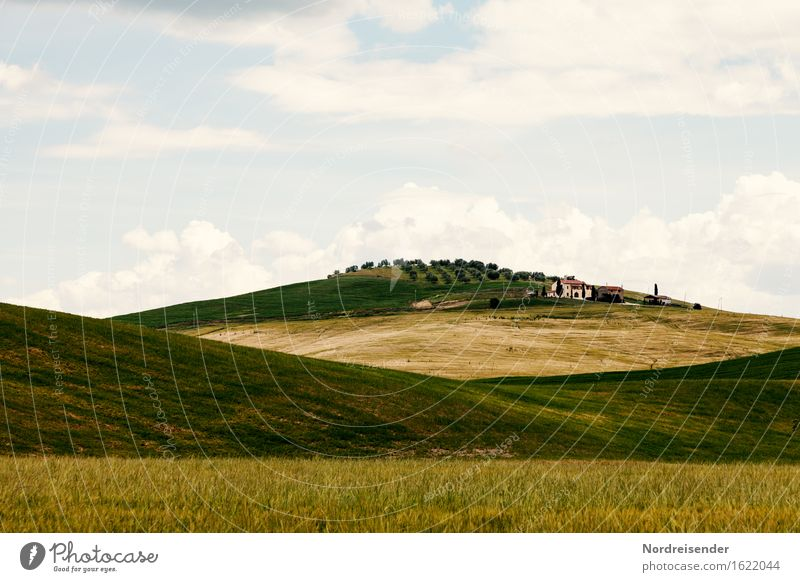 Tuscany Harmonious Calm Vacation & Travel Tourism Summer Summer vacation Mountain Hiking Nature Landscape Clouds Beautiful weather Grass Meadow Field Hill