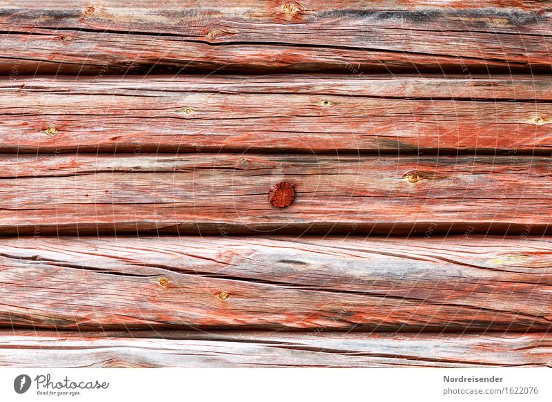 wood structure Craft (trade) Hut Building Architecture Facade Wood Living or residing Sustainability Gray Red Authentic Tradition Crack & Rip & Tear