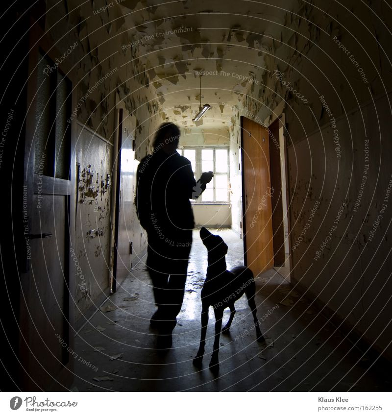 Dog Human being Man Old Animal Love Trust Relationship Corridor Love of animals Affection Consistent Building for demolition Community service