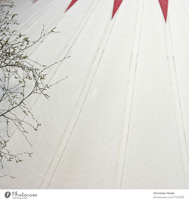 circus Circus Tent Circus tent Covers (Construction) White Red Bochum Tree Branch Black Stripe Roof Architecture Leisure and hobbies Things