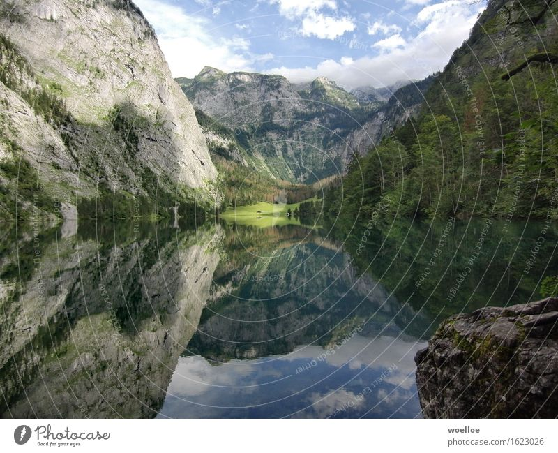 Mighty Mirror Lake Mountain Landscape Water Beautiful weather Tree Forest Rock Berchtesgaden Alpes Lakeside Lake Obersee Germany Europe Deserted Hut