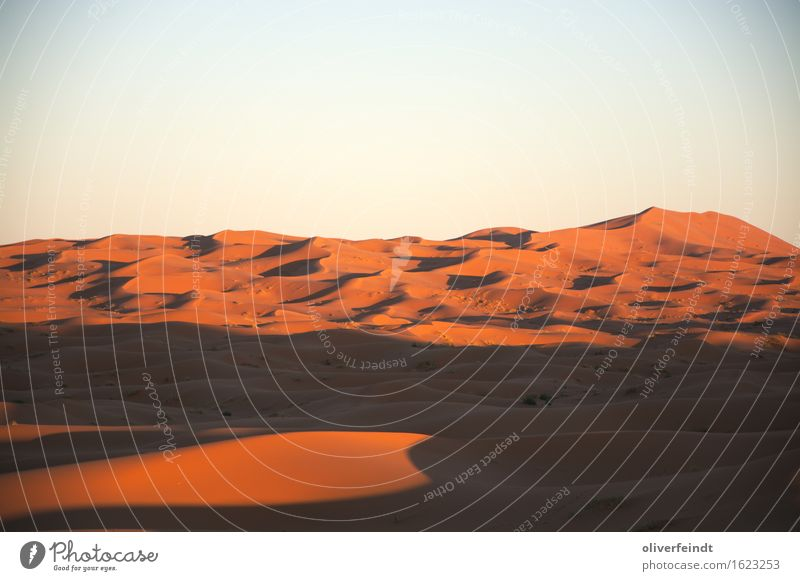 Sahara III Vacation & Travel Trip Adventure Far-off places Freedom Expedition Environment Nature Landscape Elements Earth Sand Sky Cloudless sky Horizon Sunrise