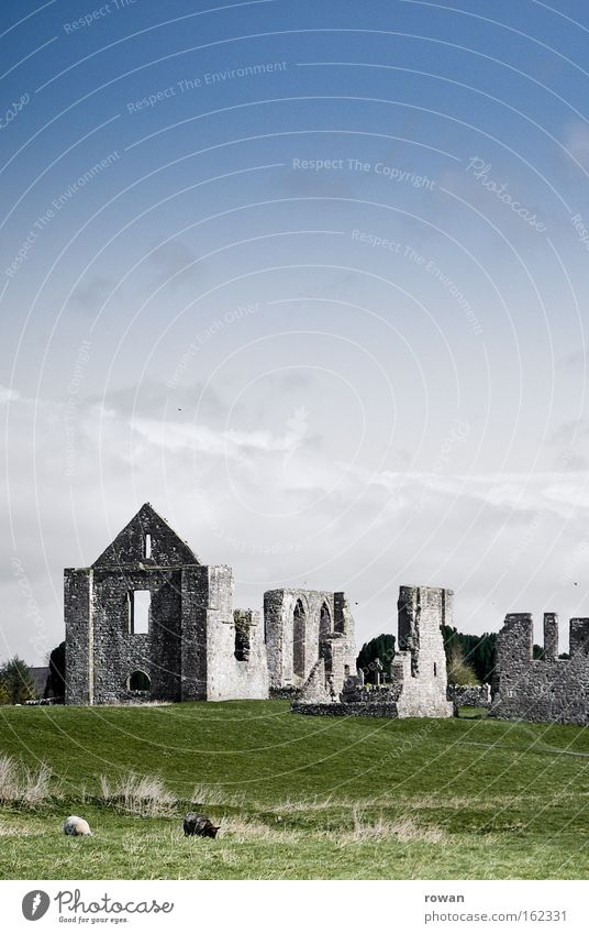 Ireland Colour photo Exterior shot Deserted Copy Space top Copy Space middle Neutral Background Day Landscape Grass Meadow Castle Ruin Manmade structures