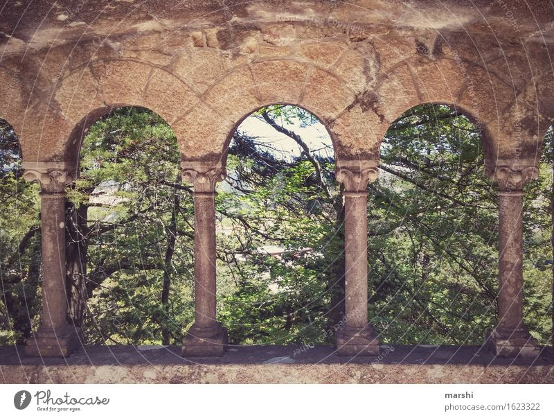 View into the green Arch Window arch Park Sintra Portugal Forest Green Nature Castle Lisbon Vintage Relaxation Vacation & Travel Travel photography Calm
