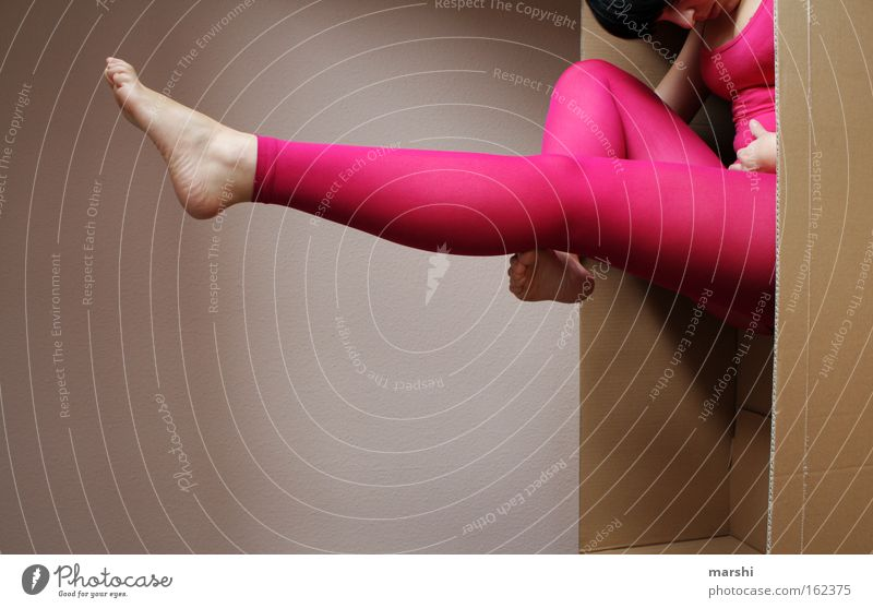 Woman Joy Adults Playing Legs Fashion Feet Body Dance Pink Perspective Shows Posture Retro Stockings Paper
