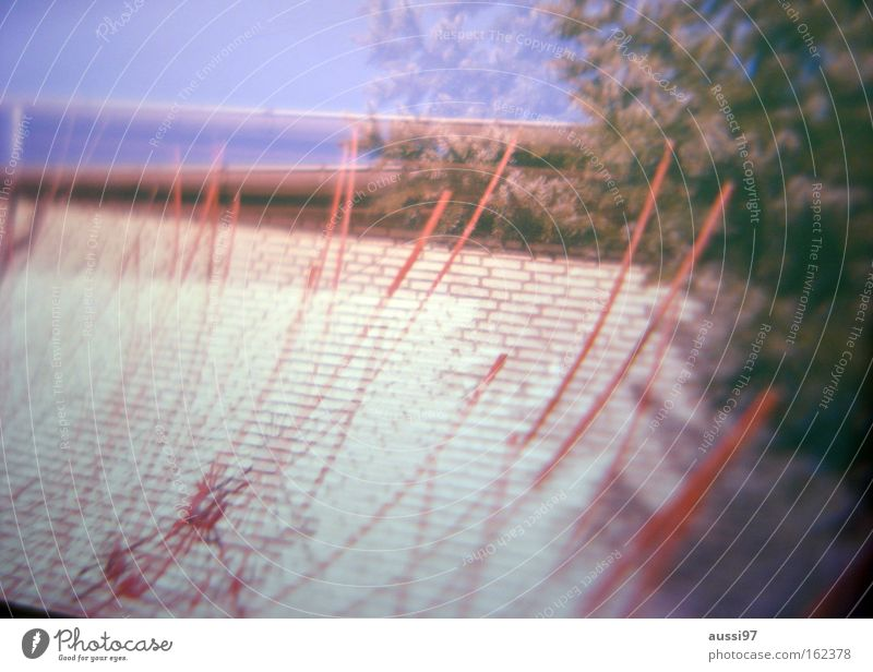 To the farm Double exposure Analog Blur Slide Roof Twig Lomography