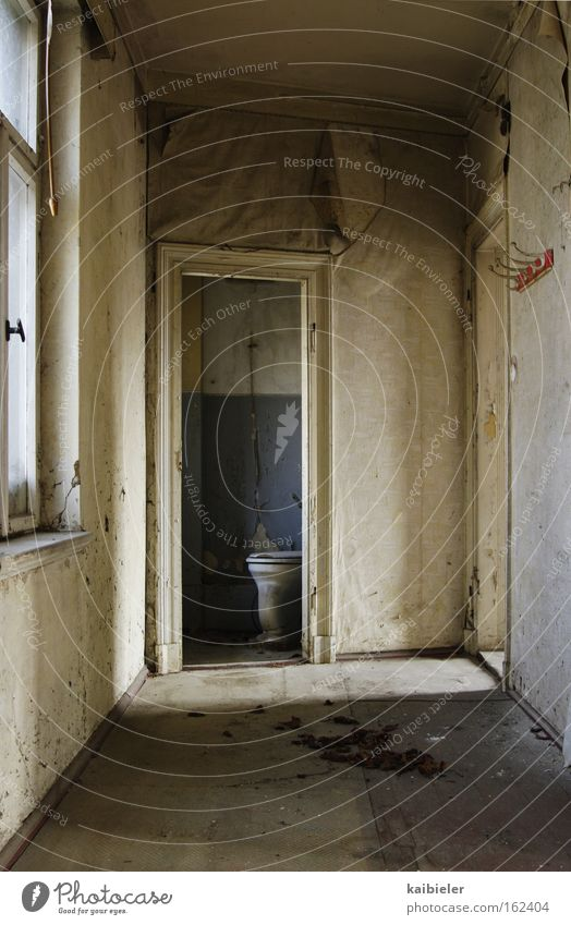 Loneliness Bathroom Transience Toilet Derelict Decline Audience Leipzig Ruin Hallway Voyeurism