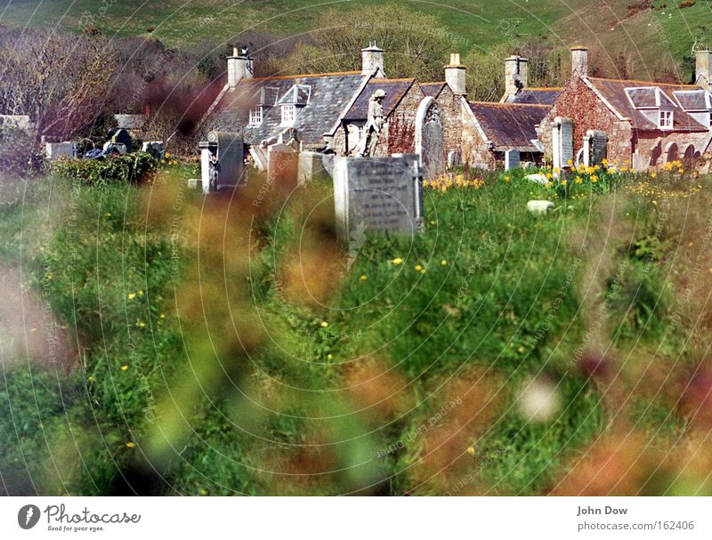 Sleepy nest Deserted Copy Space bottom Day Blur Living or residing House (Residential Structure) Beautiful weather Grass Bushes Village Chimney Tombstone Sign