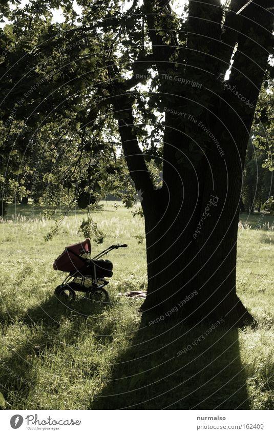 Children Children Baby Carriage Park Break Tree Shadow Relaxation Sleep Scream Parking Emotions Toddler